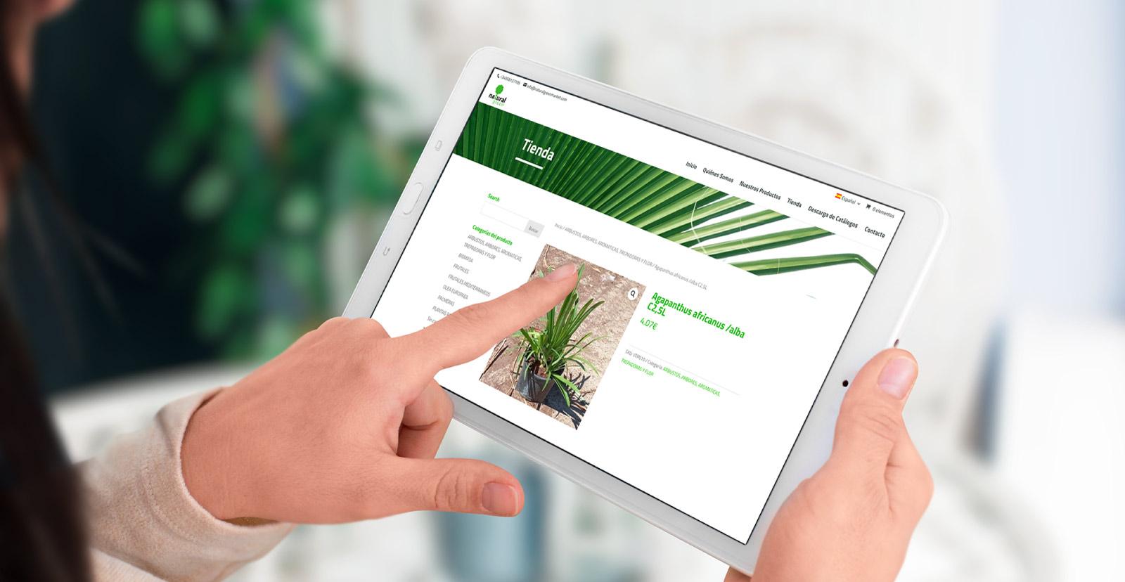 Diseño web de tienda online por Mood 359 para Aceites Echinac