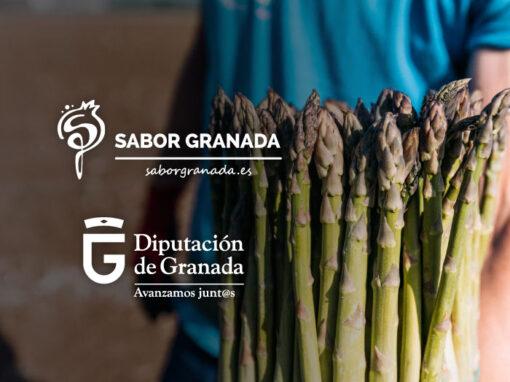 Campañas Sabor Granada, Diputación de Granada