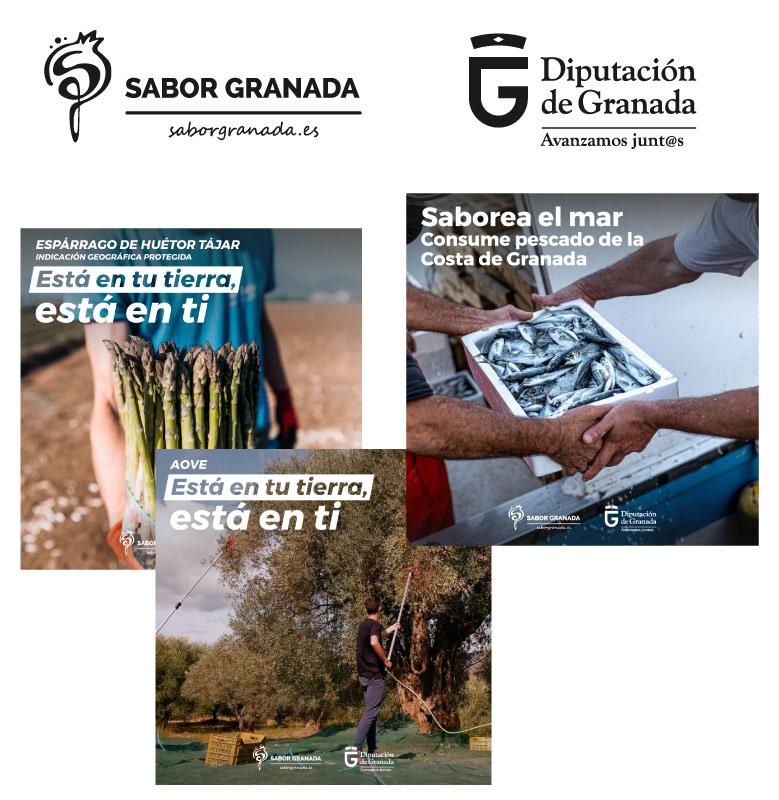 Diseño gráfico para las campañas de Sabor Granada