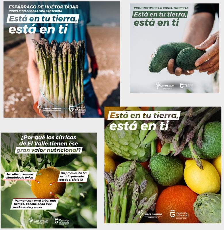 Campaña de marketing online para Sabor Granada